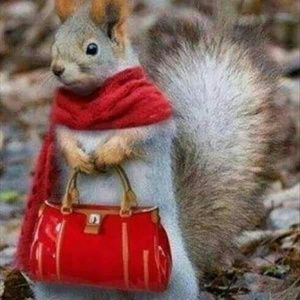 Accessories - I'm a lil Squirrelly!!